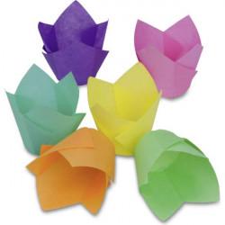 Cupcake liner Vanilla Diamonds – Maxi – 12 pieces