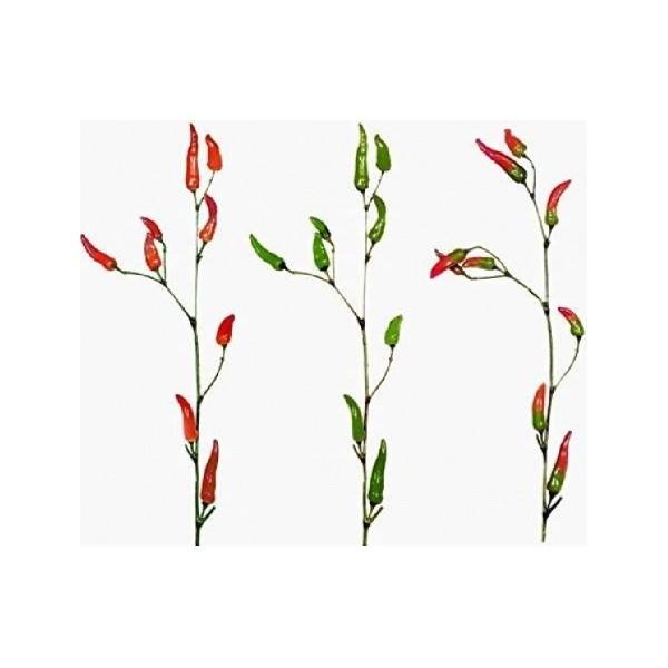 Branch Pepper